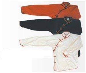 Picture of Female Crossover Kung fu Uniform