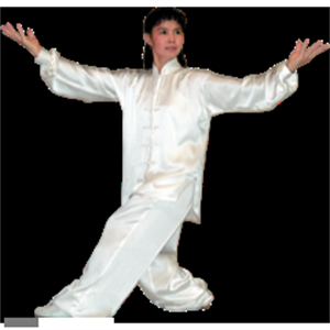 Picture of Ba Qua - Tai Chi Uniform