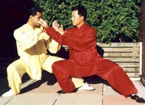 Picture of Tai Chi 100% Satin Silk Uniforms