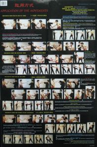 Picture of Wing Tsun Applications Poster