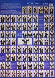 Picture of Wing Tsun Siu Nim Tau Poster