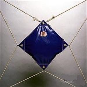 Picture of The Shock Bag