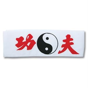 Picture of Kung Fu Head bands