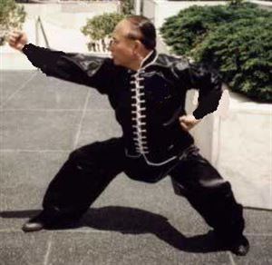 Picture of Hung Ga Kung fu Uniform Top in Satin