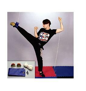 Picture of Economy Leg Exerpull