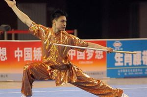 Picture of Wushu Whipstick Bo Staff